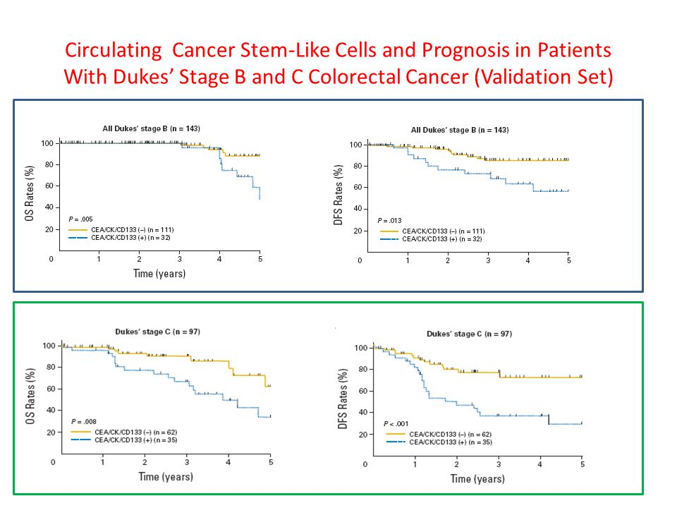 Circulating Cancer Stem-Like Cells and Prognosis in Patients With Dukes' Stage B and C Colorectal Cancer (Validation Set)