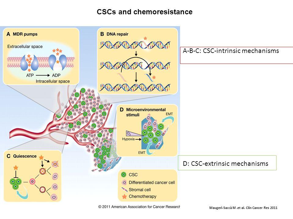 CSCs and chemoresistance Maugeri-Saccà M.et al.