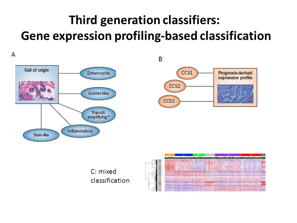 Third generation classifiers: Gene expression profiling-based classification A B C: mixed classification
