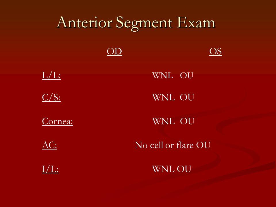Anterior Segment Exam OD OS L/L: WNLOU C/S:WNL OU Cornea:WNLOU AC: No cell or flare OU I/L: WNL OU
