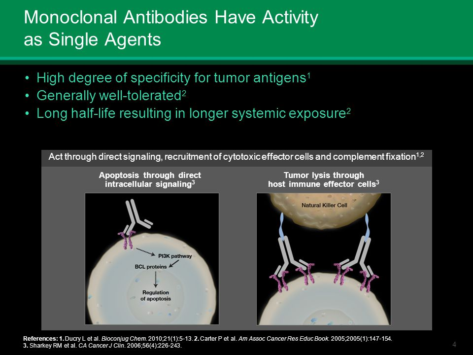 4 Monoclonal Antibodies Have Activity as Single Agents High degree of specificity for tumor antigens 1 Generally well-tolerated 2 Long half-life resul