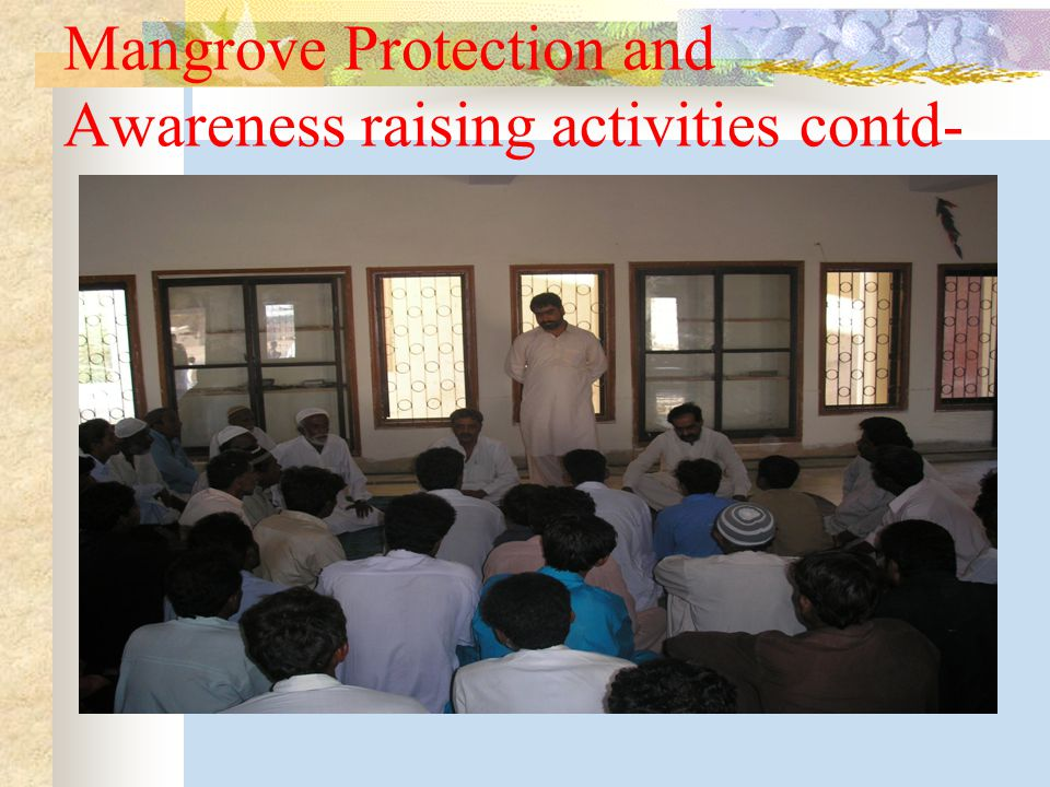 Mangrove Protection and Awareness raising activities contd-