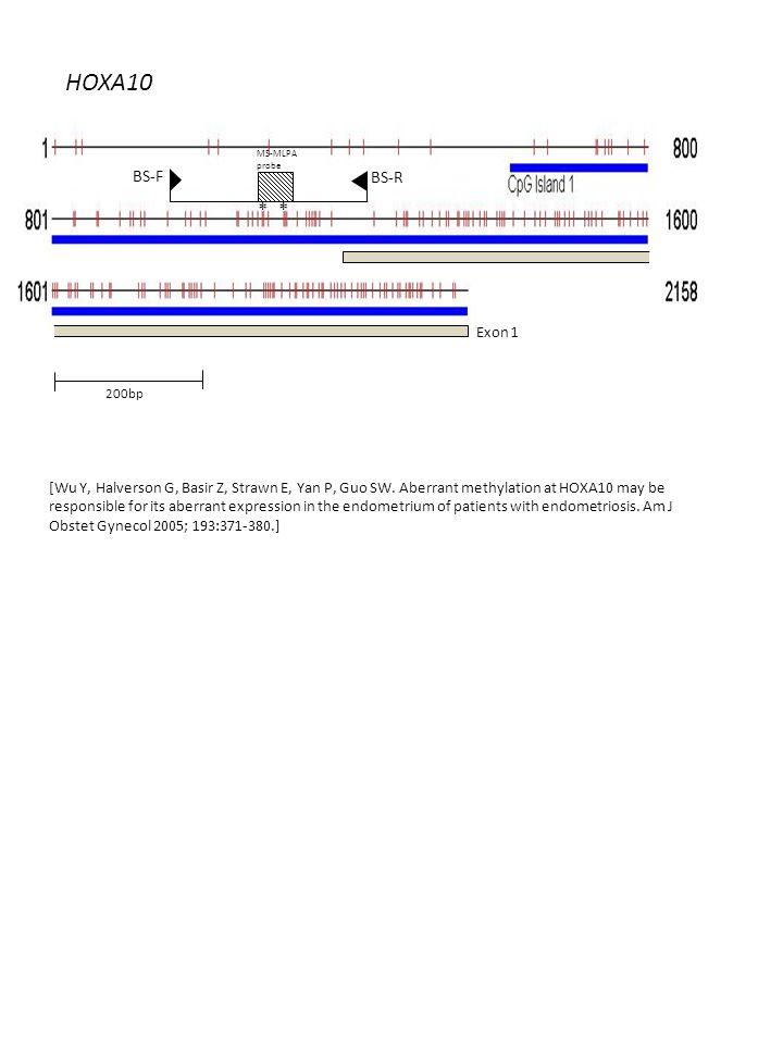 HOXA10 200bp ** BS-F BS-R MS-MLPA probe Exon 1 [Wu Y, Halverson G, Basir Z, Strawn E, Yan P, Guo SW.