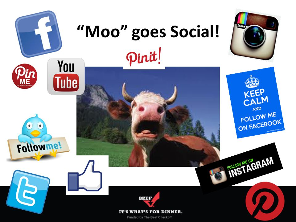Moo goes Social!