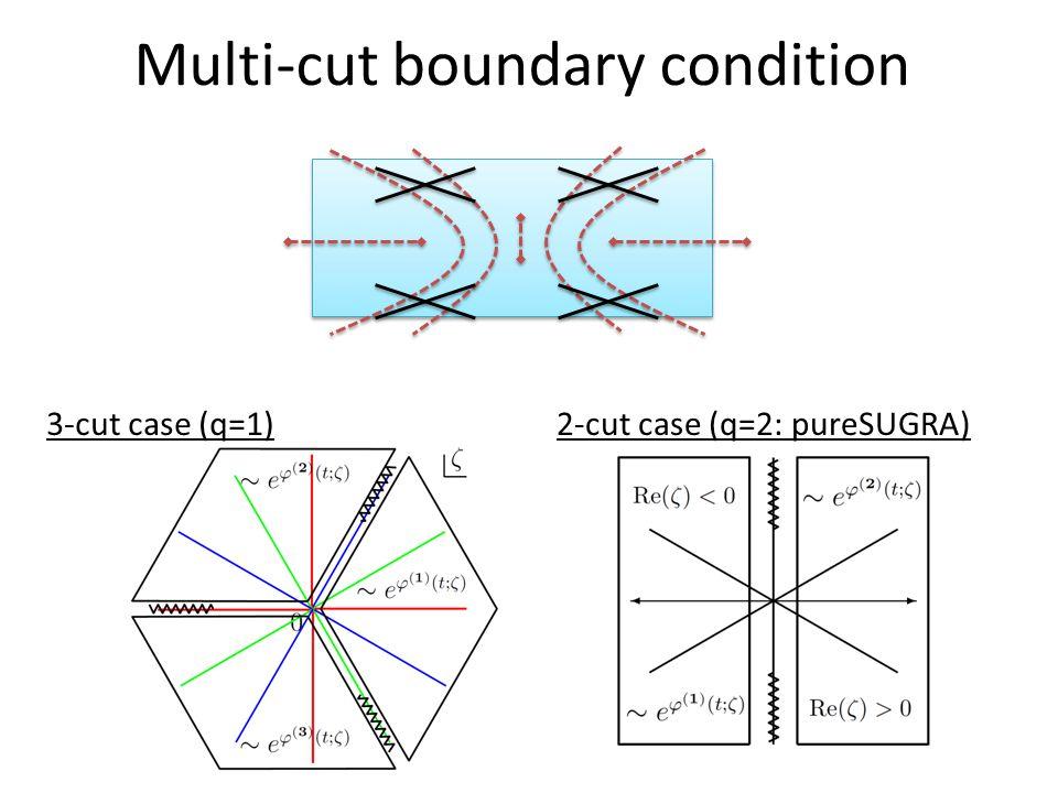 Multi-cut boundary condition 3-cut case (q=1)2-cut case (q=2: pureSUGRA)