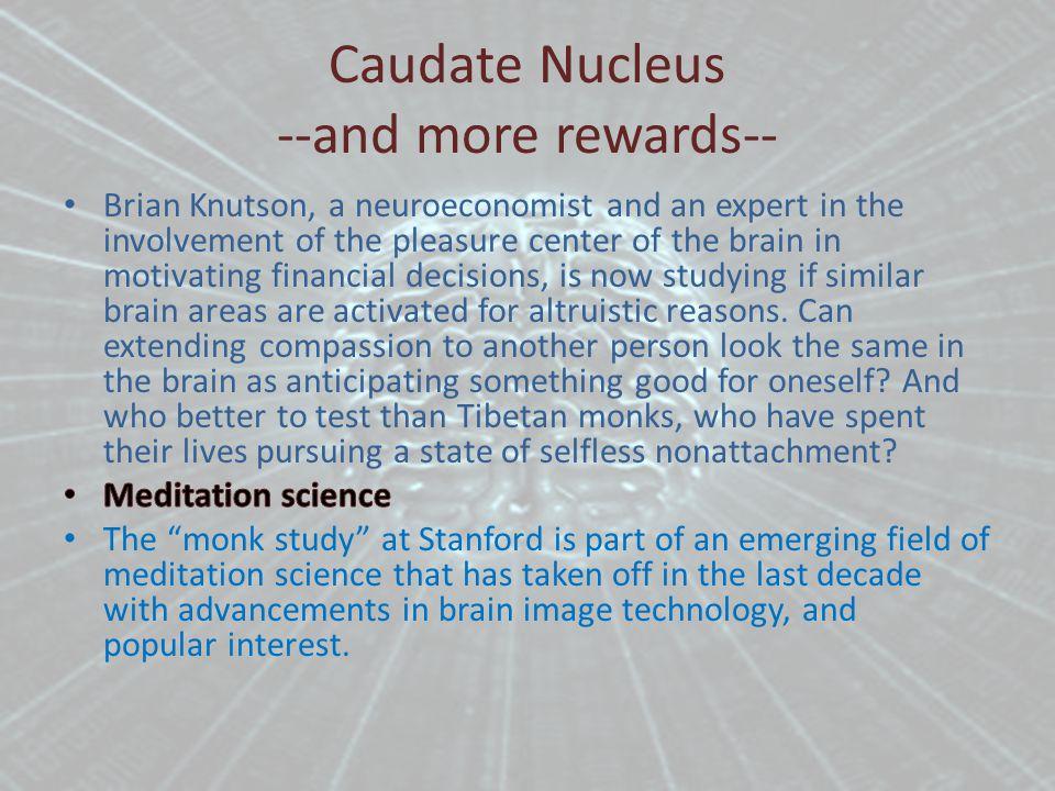 Caudate Nucleus --and more rewards--