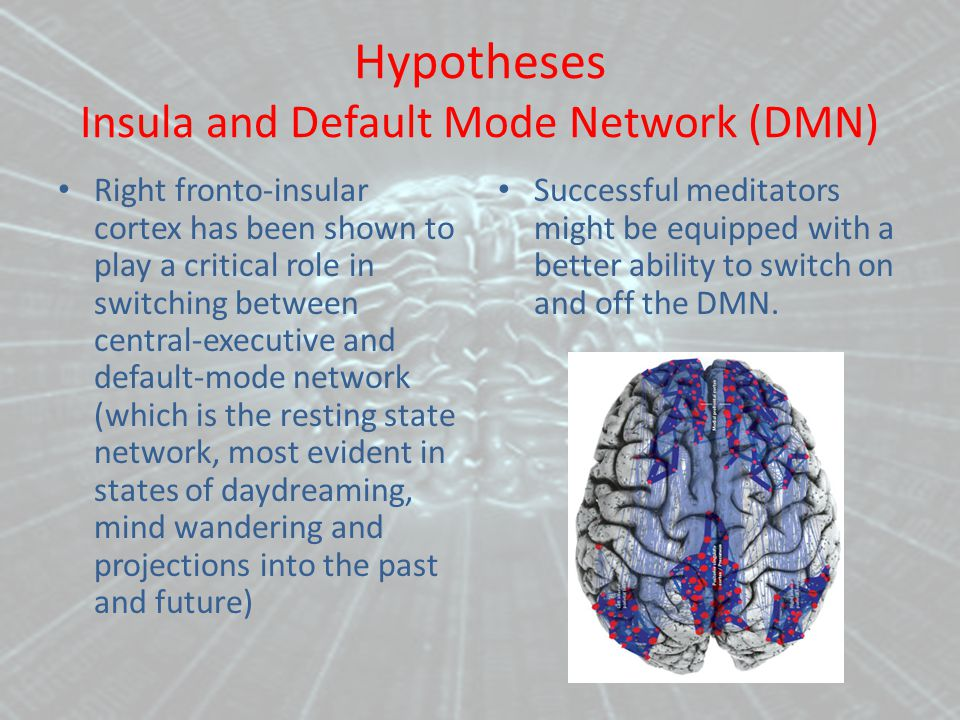 Hypotheses Insula and Default Mode Network (DMN) Right fronto-insular cortex has been shown to play a critical role in switching between central-executive and default-mode network (which is the resting state network, most evident in states of daydreaming, mind wandering and projections into the past and future) Successful meditators might be equipped with a better ability to switch on and off the DMN.