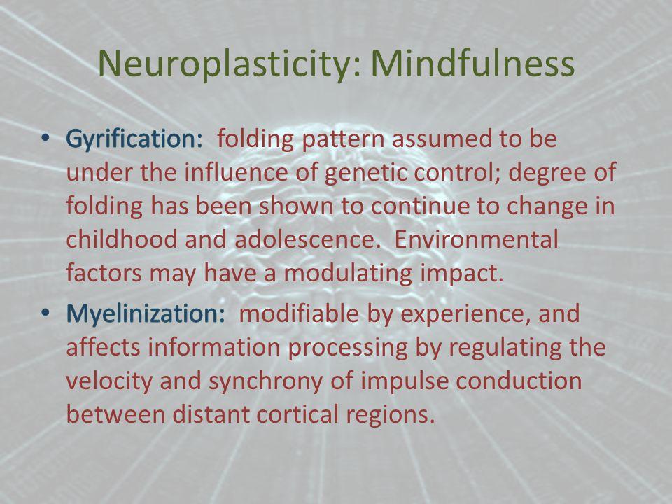 Neuroplasticity: Mindfulness