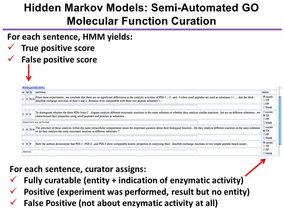 Hidden Markov Models: Semi-Automated GO Molecular Function Curation For each sentence, HMM yields: True positive score False positive score For each s