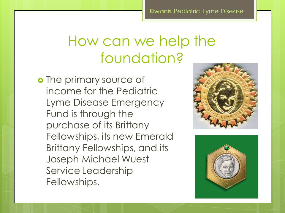 How can we help the foundation?  The primary source of income for the Pediatric Lyme Disease Emergency Fund is through the purchase of its Brittany F