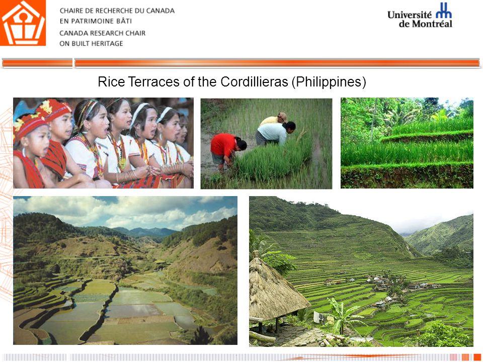 Rice Terraces of the Cordillieras (Philippines)
