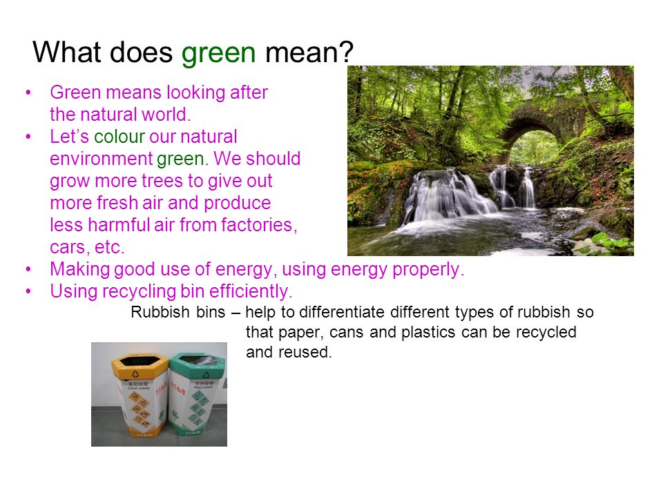What does green mean. Green means looking after the natural world.
