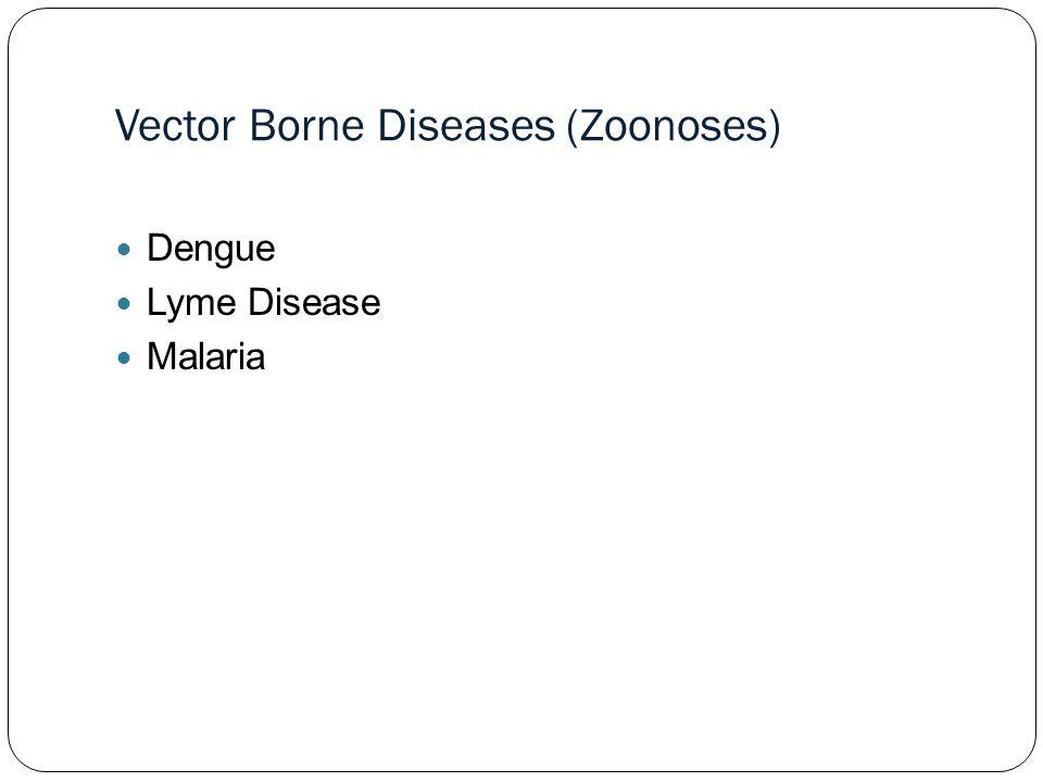 Vector Borne Diseases (Zoonoses) Dengue Lyme Disease Malaria