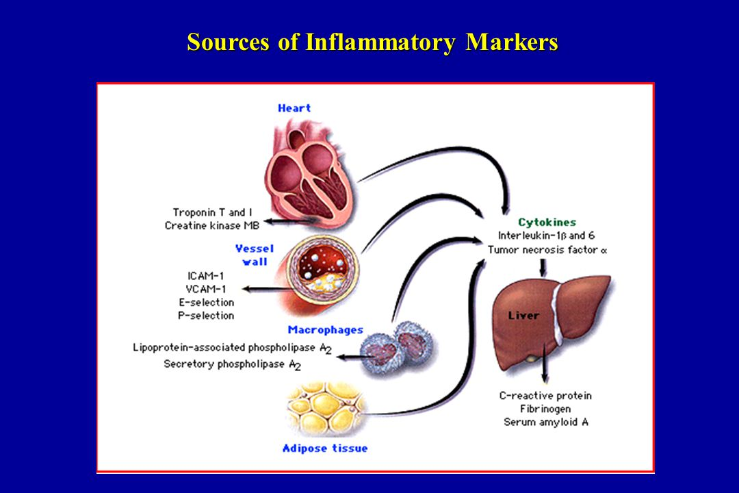 Sources of Inflammatory Markers