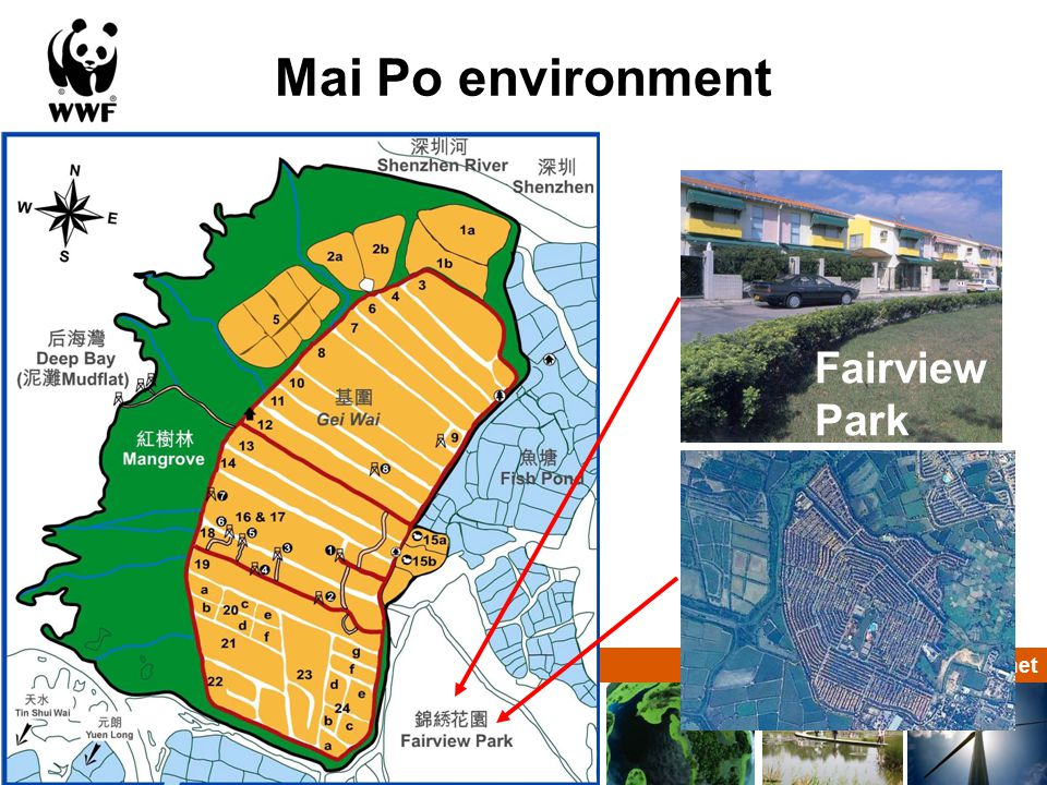 Solutions for a living planet Mai Po environment Fairview Park