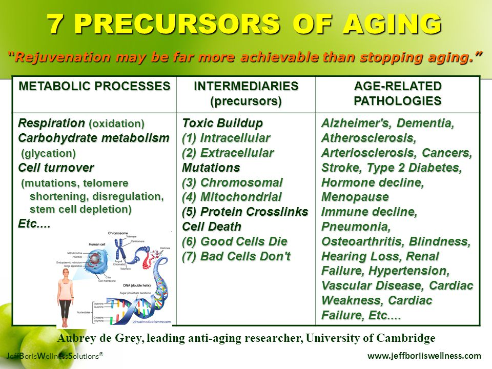 J eff B oris W ellness S olutions © www.jeffboriiswellness.com METABOLIC PROCESSES INTERMEDIARIES(precursors) AGE-RELATED PATHOLOGIES Respiration (oxi