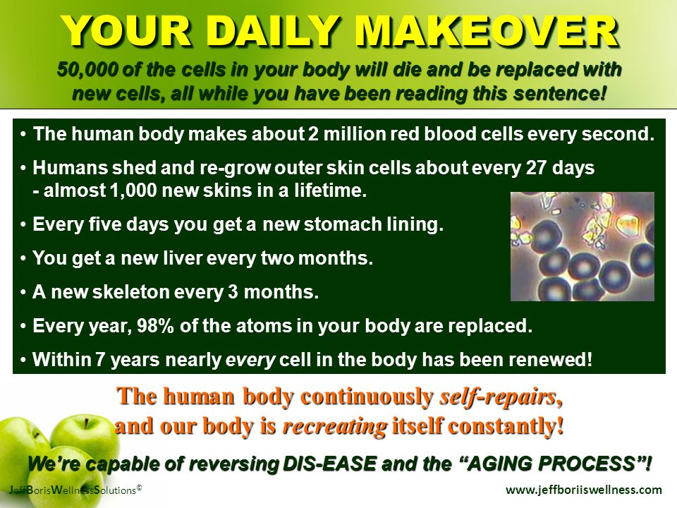 J eff B oris W ellness S olutions © www.jeffboriiswellness.com YOUR DAILY MAKEOVER 50,000 of the cells in your body will die and be replaced with new