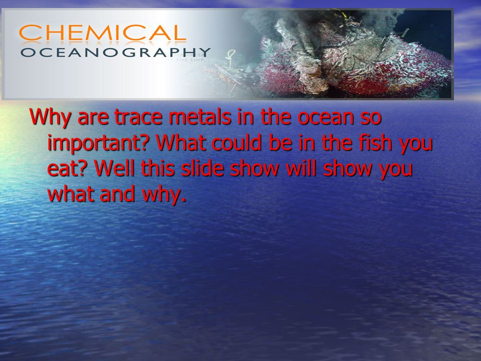 Why are trace metals in the ocean so important. What could be in the fish you eat.