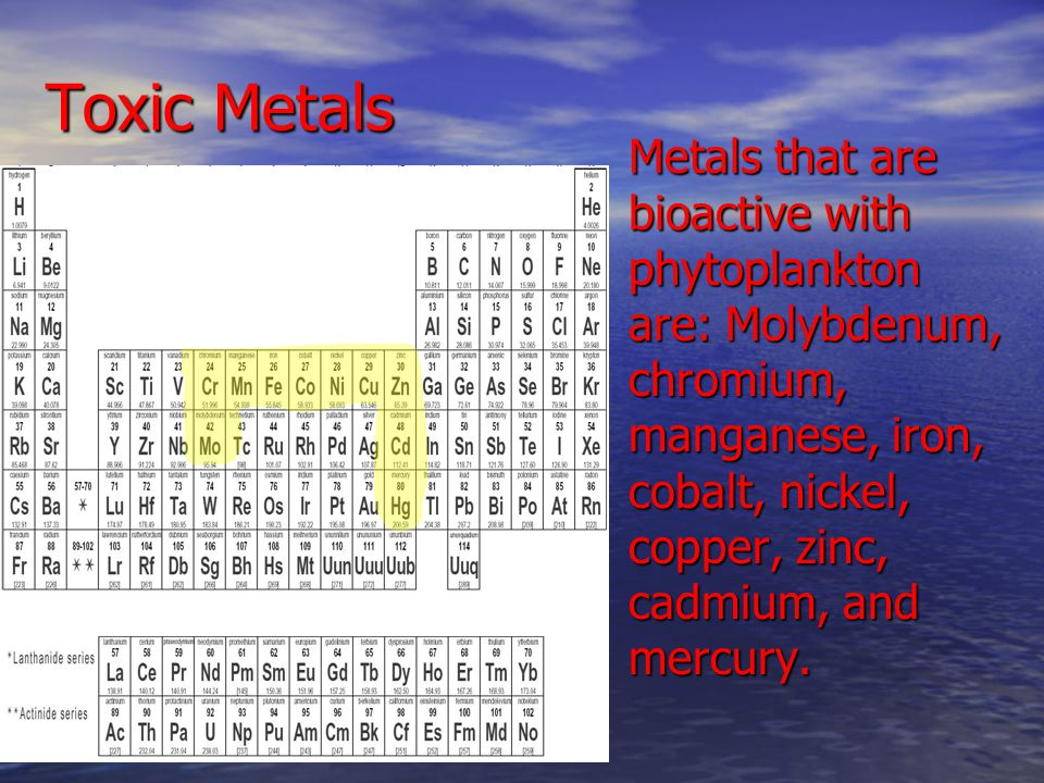 Toxic Metals Metals that are bioactive with phytoplankton are: Molybdenum, chromium, manganese, iron, cobalt, nickel, copper, zinc, cadmium, and mercury.