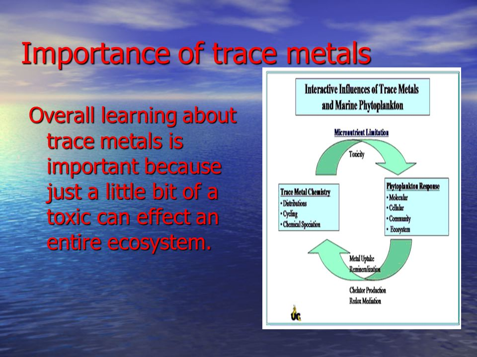 Importance of trace metals Overall learning about trace metals is important because just a little bit of a toxic can effect an entire ecosystem.