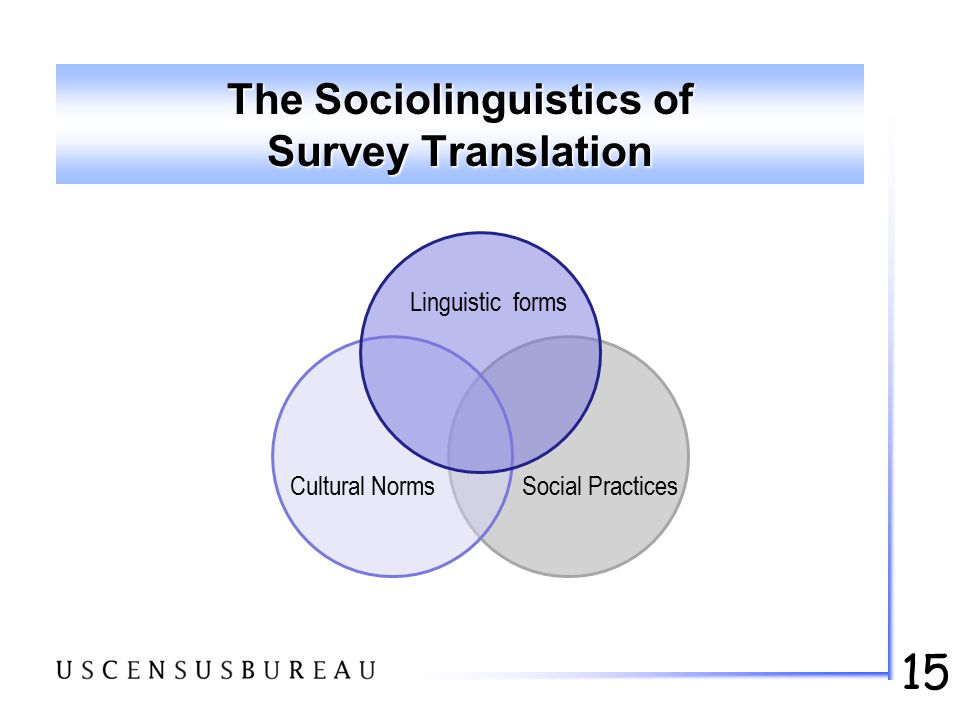 15 The Sociolinguistics of Survey Translation Linguistic forms Cultural NormsSocial Practices