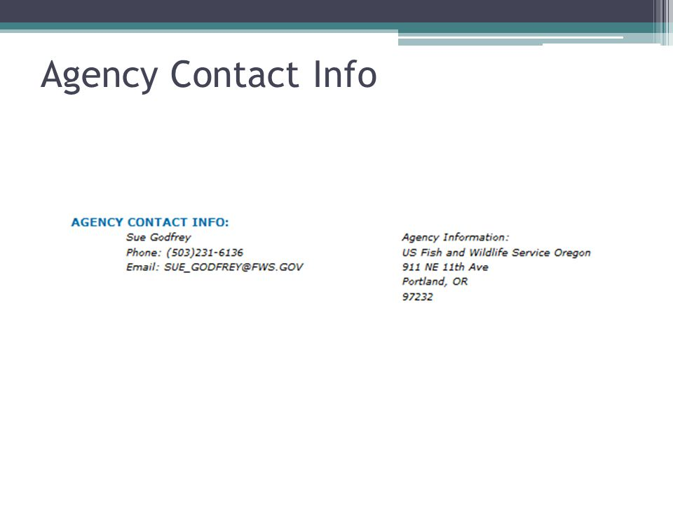 Agency Contact Info