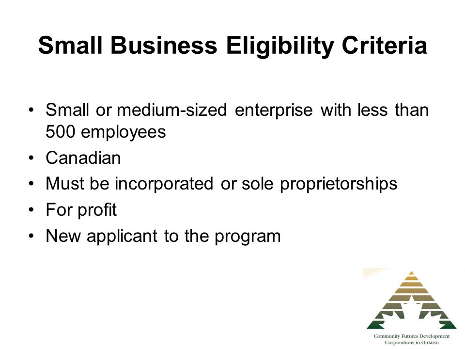Small Business Eligibility Criteria Small or medium-sized enterprise with less than 500 employees Canadian Must be incorporated or sole proprietorship