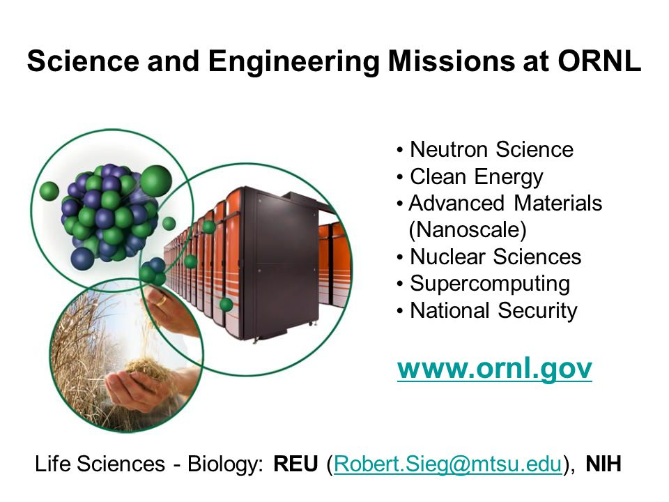 Science and Engineering Missions at ORNL Neutron Science Clean Energy Advanced Materials (Nanoscale) Nuclear Sciences Supercomputing National Security www.ornl.gov Life Sciences - Biology: REU (Robert.Sieg@mtsu.edu), NIHRobert.Sieg@mtsu.edu