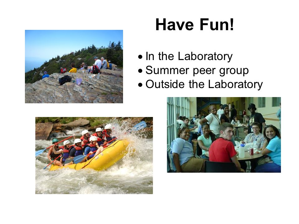  In the Laboratory  Summer peer group  Outside the Laboratory Have Fun!
