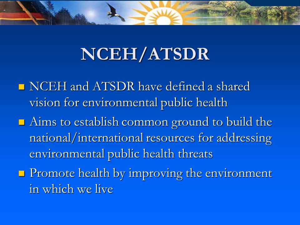 NCEH/ATSDR NCEH and ATSDR have defined a shared vision for environmental public health NCEH and ATSDR have defined a shared vision for environmental public health Aims to establish common ground to build the national/international resources for addressing environmental public health threats Aims to establish common ground to build the national/international resources for addressing environmental public health threats Promote health by improving the environment in which we live Promote health by improving the environment in which we live