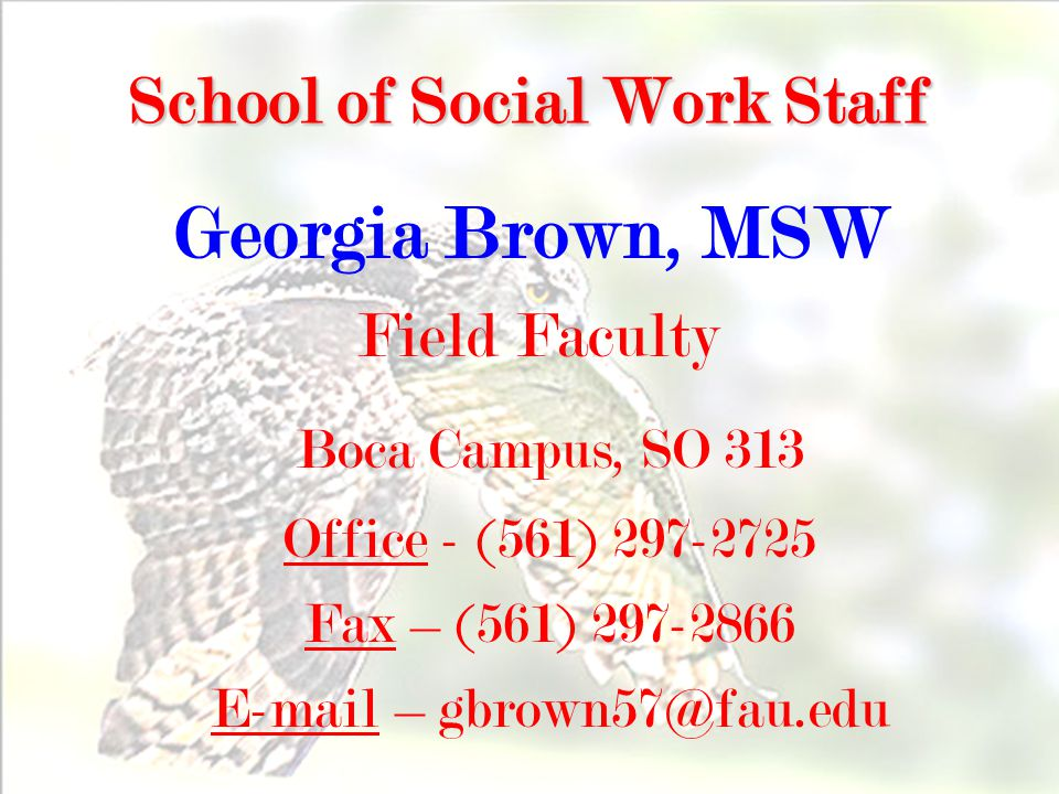 46 School of Social Work Staff Georgia Brown, MSW Field Faculty Boca Campus, SO 313 Office - (561) 297-2725 Fax – (561) 297-2866 E-mail – gbrown57@fau.edu