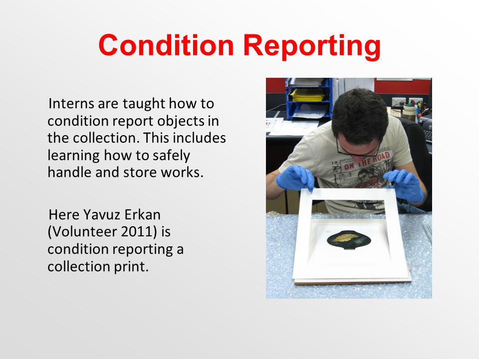 Condition Reporting Interns are taught how to condition report objects in the collection.