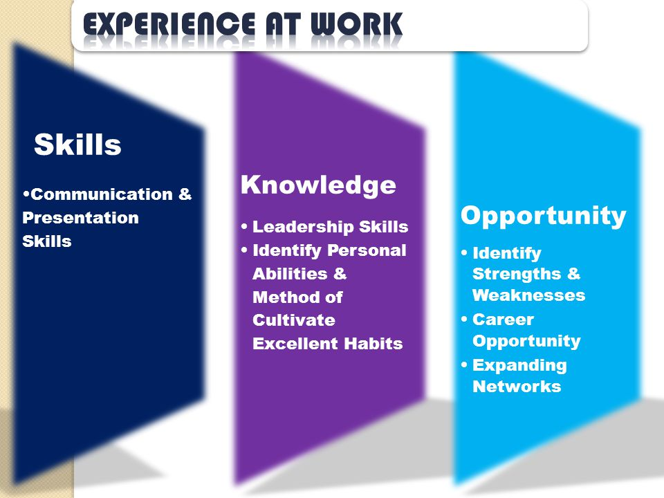 Skills Communication & Presentation Skills Knowledg e Leadership Skills Identify Personal Abilities & Method of Cultivate Excellent Habits Opportuni t