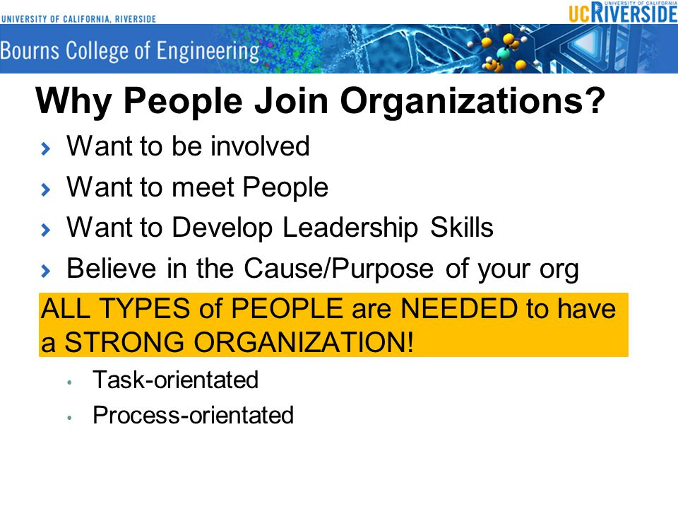 Why People Join Organizations.