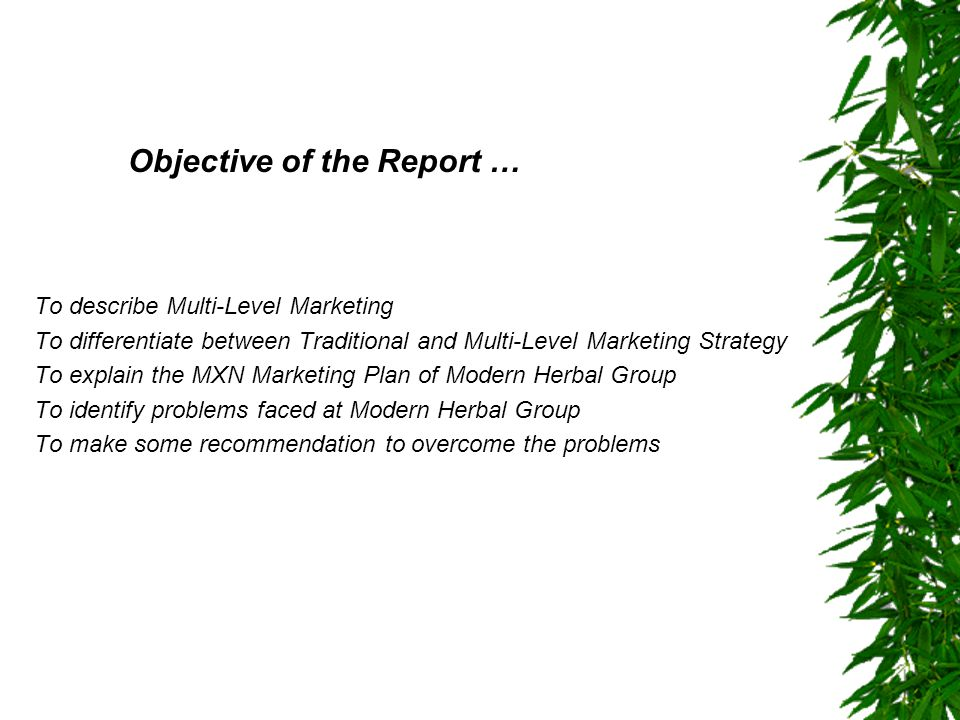 Objective of the Report … To describe Multi-Level Marketing To differentiate between Traditional and Multi-Level Marketing Strategy To explain the MXN