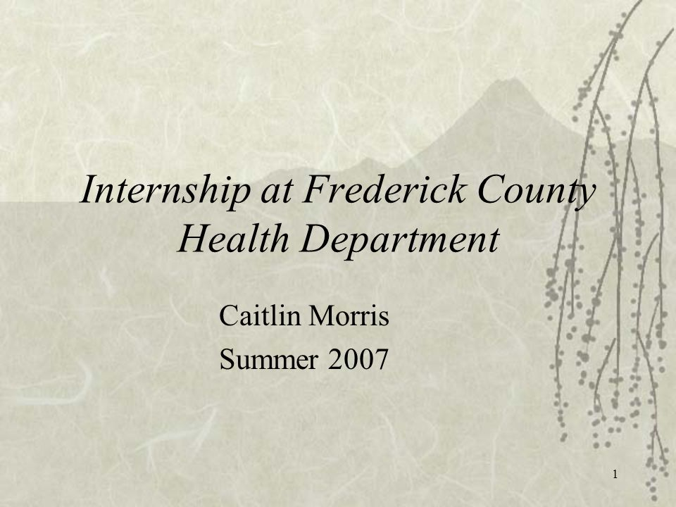 1 Internship at Frederick County Health Department Caitlin Morris Summer 2007