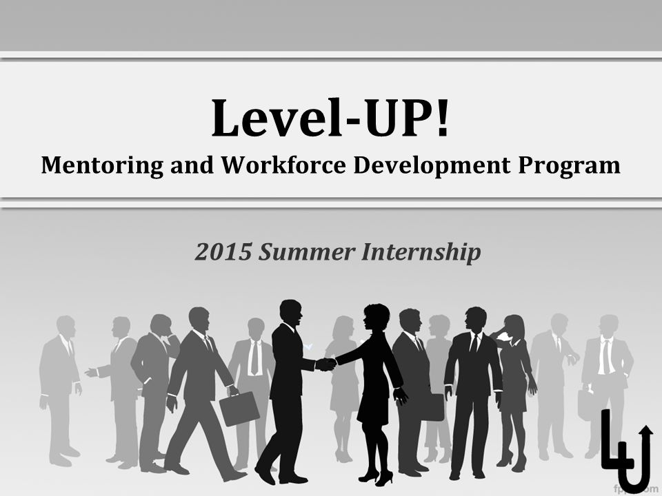 Level-UP! Mentoring and Workforce Development Program 2015 Summer Internship