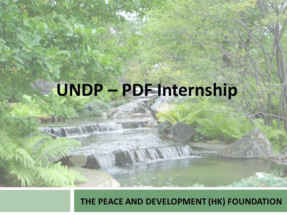 THE PEACE AND DEVELOPMENT (HK) FOUNDATION UNDP – PDF Internship