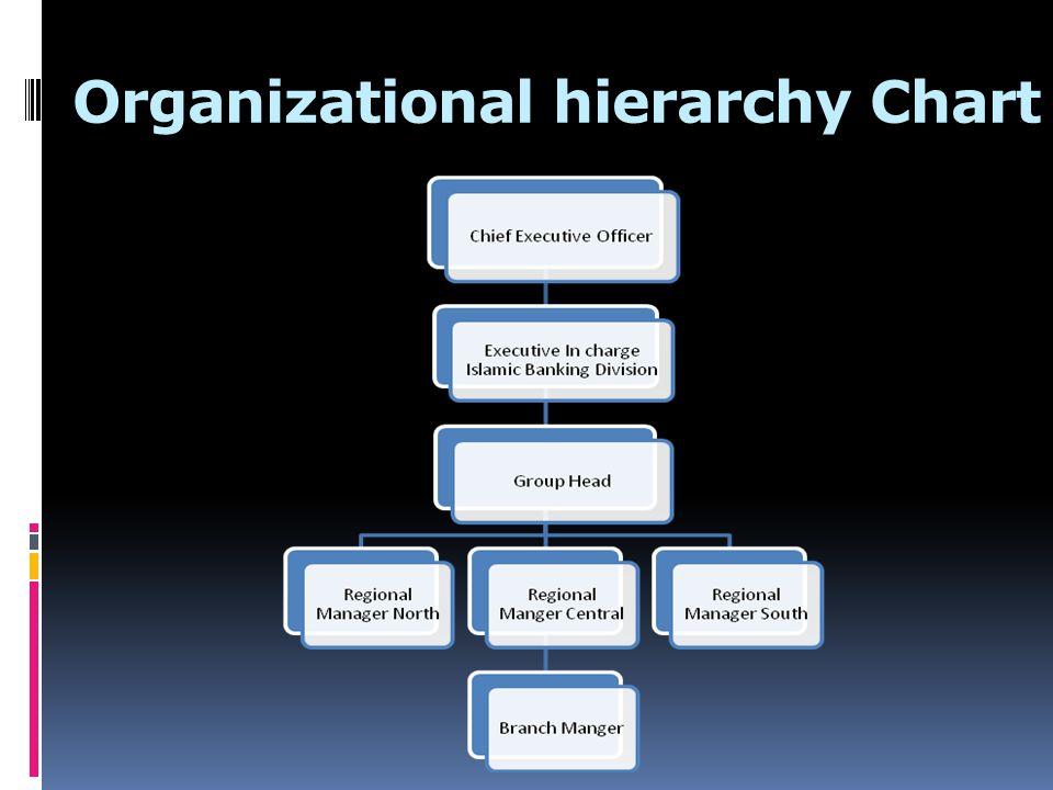 Organizational Management Analysis