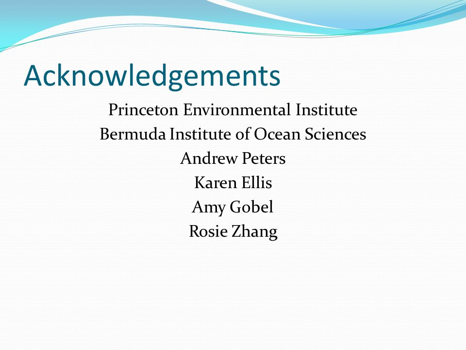 Acknowledgements Princeton Environmental Institute Bermuda Institute of Ocean Sciences Andrew Peters Karen Ellis Amy Gobel Rosie Zhang