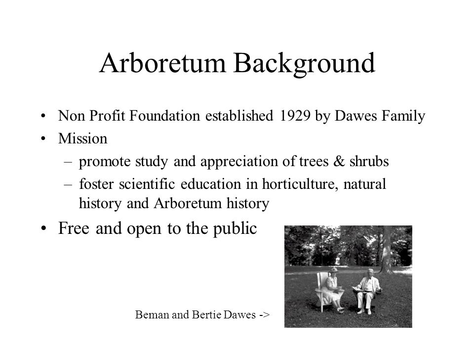 Arboretum Background Non Profit Foundation established 1929 by Dawes Family Mission –promote study and appreciation of trees & shrubs –foster scientific education in horticulture, natural history and Arboretum history Free and open to the public Beman and Bertie Dawes ->