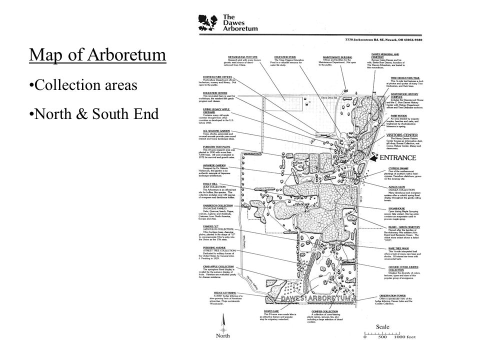 Map of Arboretum Collection areas North & South End