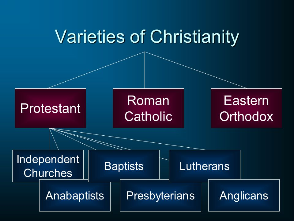Varieties of Christianity Roman Catholic Eastern Orthodox Protestant Independent Churches Anabaptists Baptists Presbyterians Lutherans Anglicans