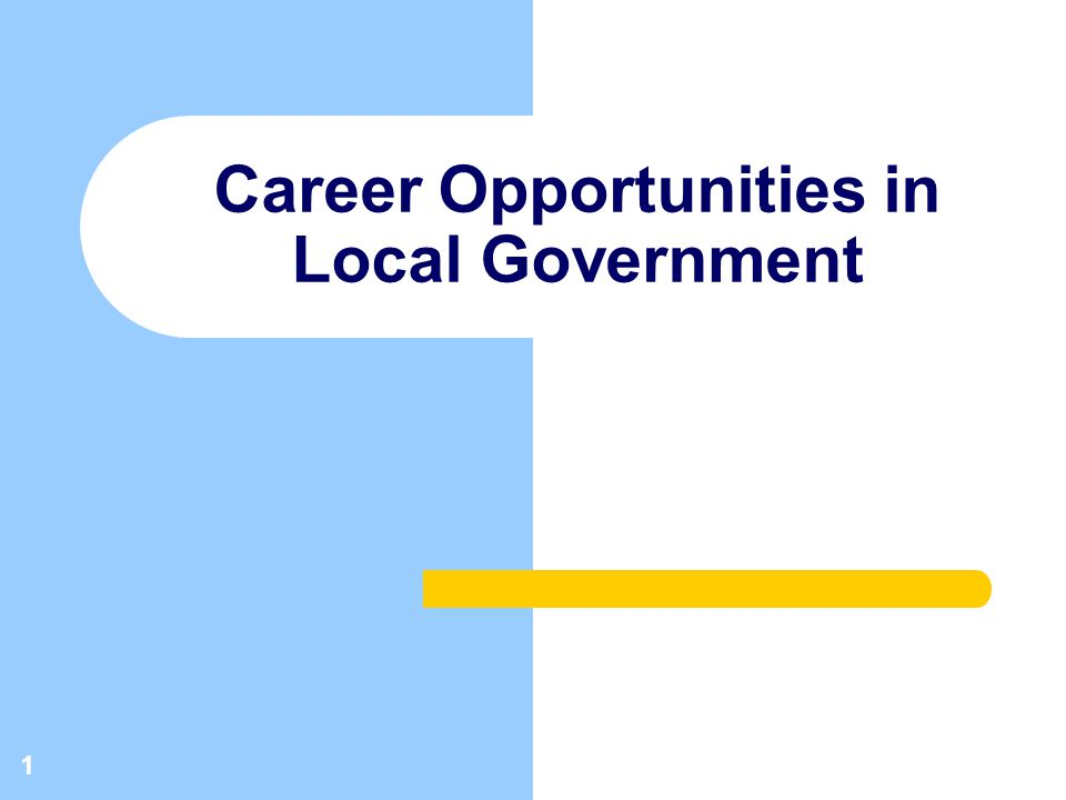 1 Career Opportunities in Local Government