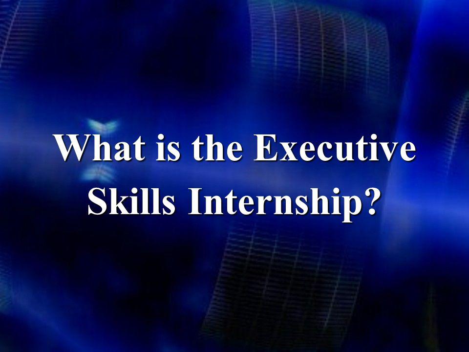 What is the Executive Skills Internship