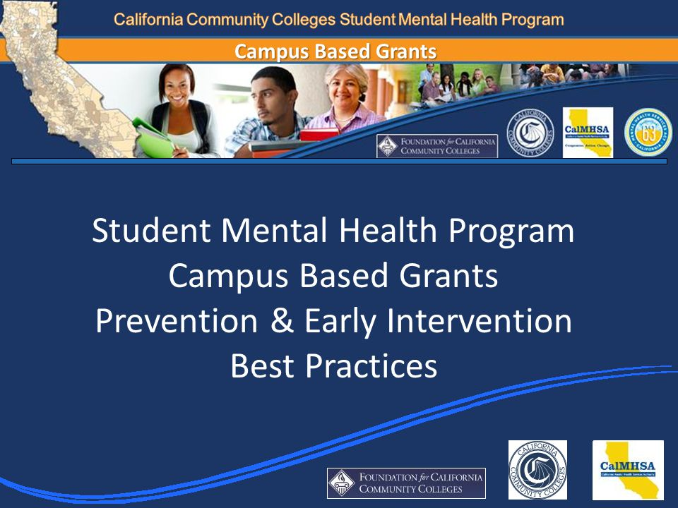 Associated Student Organization (ASO); Health & Wellness Subcommittee Kognito At-Risk Modules – Promoted by Students Focus Groups – Student Veterans; Puente Students; SUCCESS Students NAMI on Campus Club – initiated/run by students Peer Resource Development