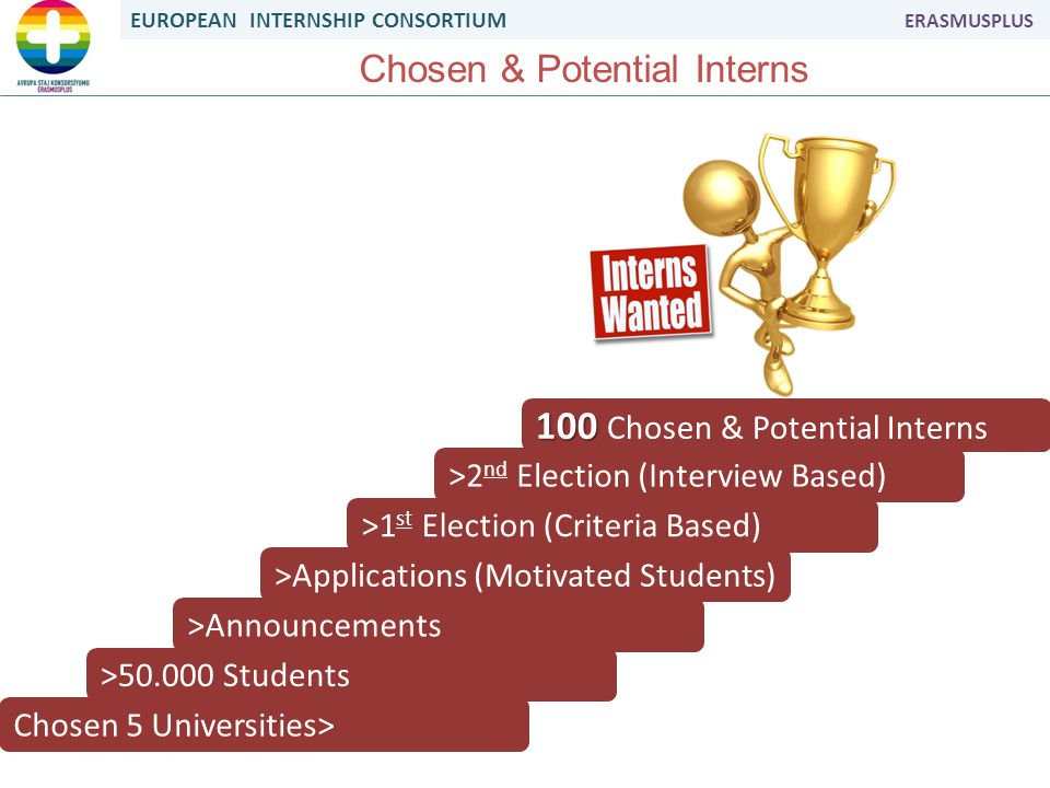 EUROPEAN INTERNSHIP CONSORTIUM ERASMUSPLUS Chosen & Potential Interns Chosen 5 Universities> >50.000 Students >Announcements >Applications (Motivated Students) >1 st Election (Criteria Based) >2 nd Election (Interview Based) 100 100 Chosen & Potential Interns
