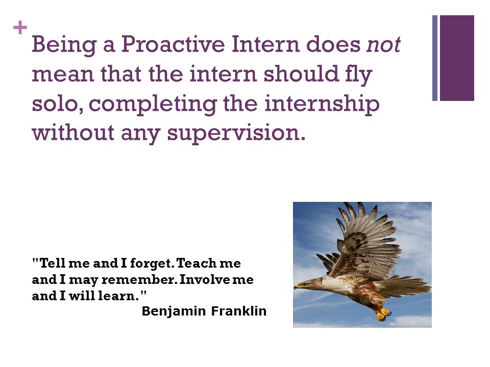 + Being a Proactive Intern does not mean that the intern should fly solo, completing the internship without any supervision.