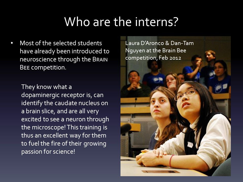 Who are the interns? Most of the selected students have already been introduced to neuroscience through the B RAIN B EE competition. They know what a