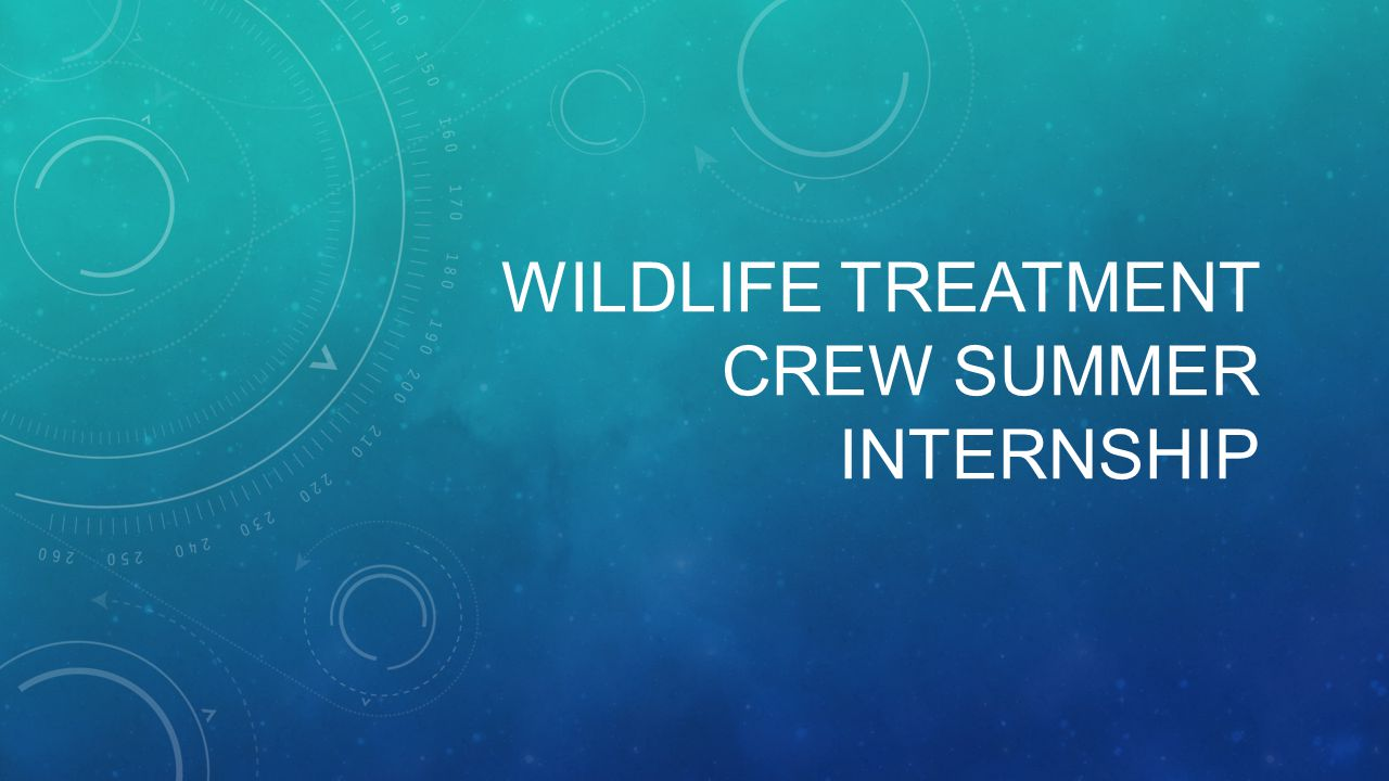WILDLIFE TREATMENT CREW SUMMER INTERNSHIP